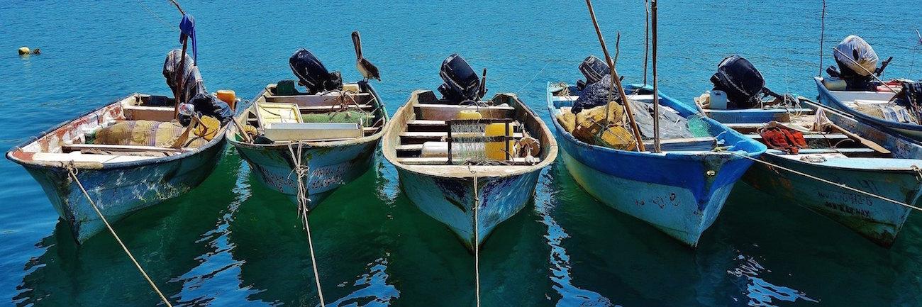 Fishing boats in the marina photo by Jasmine Hohenstein